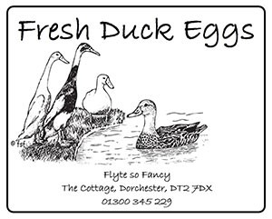Egg Box Lable for Duck Eggs