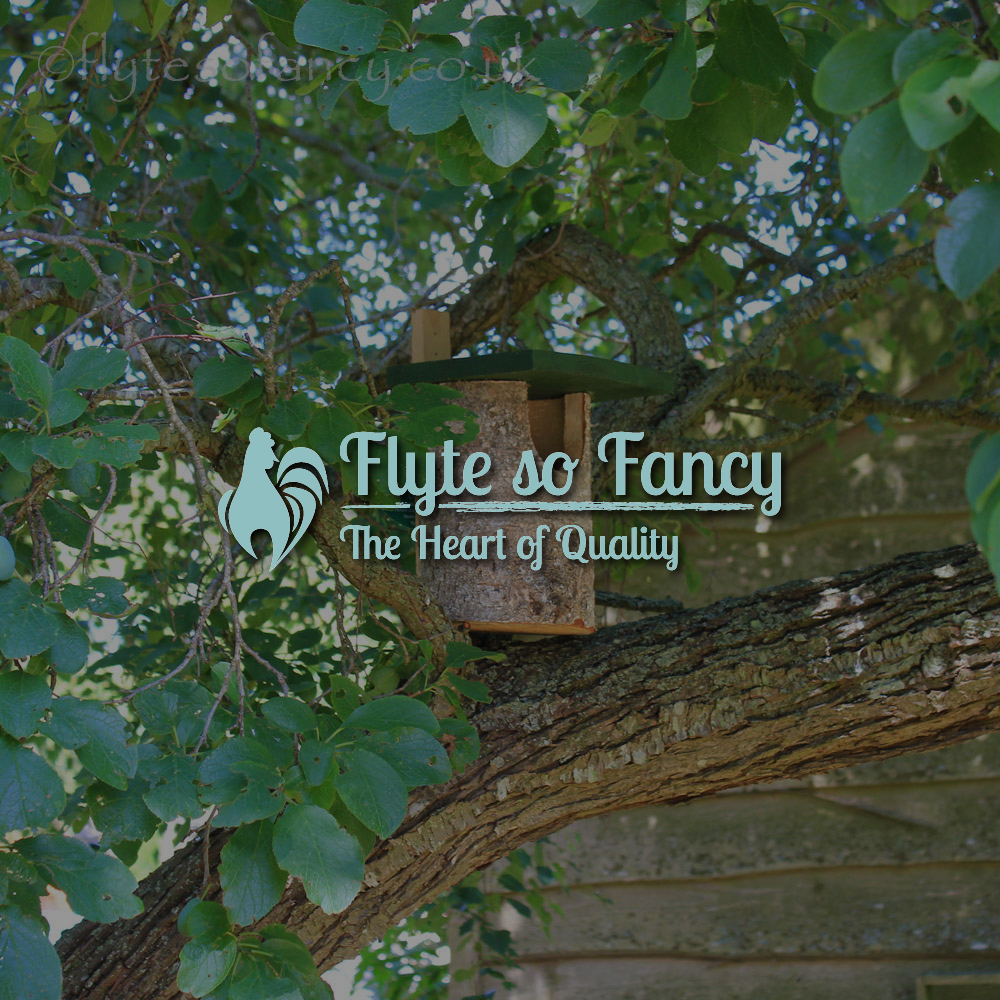 Brecon Open Fronted Wooden Nest Box