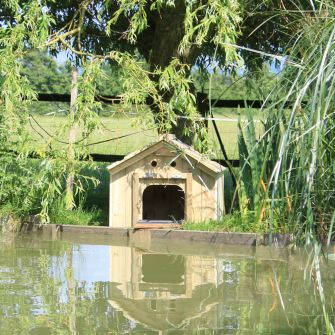Small Dinky Duck House