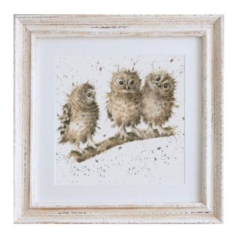 Baby Owls 'You First'  Framed Print