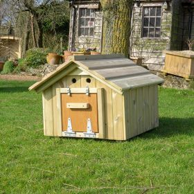 Small Pet Animal or Tortoise House