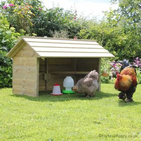 The Chicken Shelter - Large