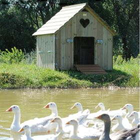 Large Classic Duck House