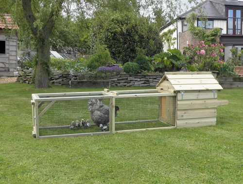 Broody Chicken Coops