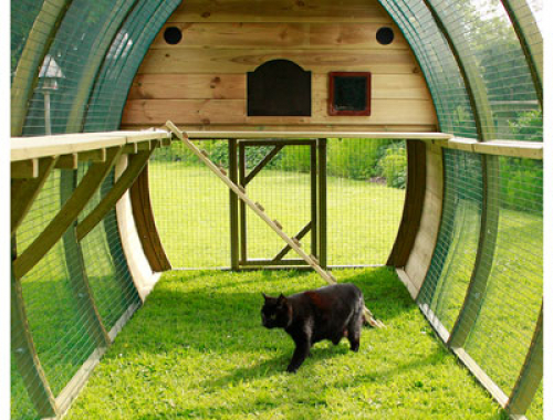 Arched Cat Houses & Catios
