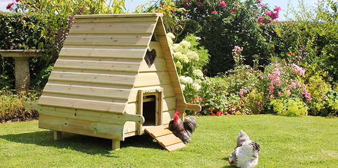 Poultry & Pet Houses