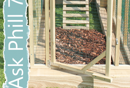 Ask Phill 7 - How to keep your chicken run clean