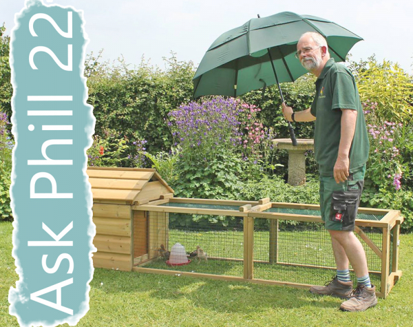 Ask Phill 22 - Keeping your Chickens Cool