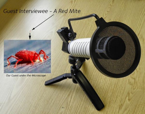 Interview with a Vampire - Being a Red Mite
